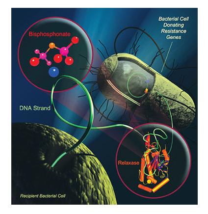 Resistant-bacteria